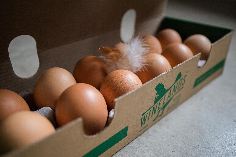 WFRC_Free_Range_Eggs_new30
